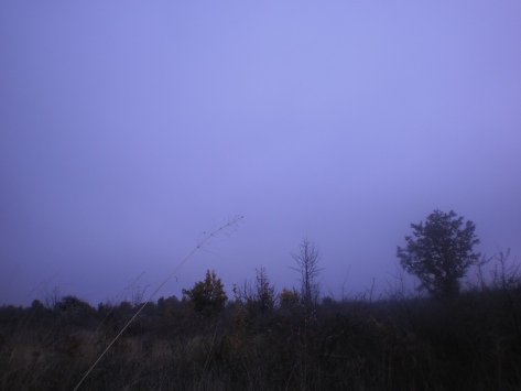 Слике са путовања: Радан, село Ивање, утрина, новембар 2014